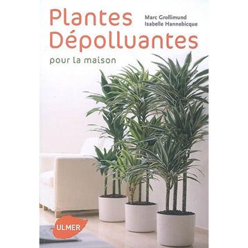 Formation le jardin mandala avec marc grollimund les 22 - Plantes depolluantes pour la maison ...