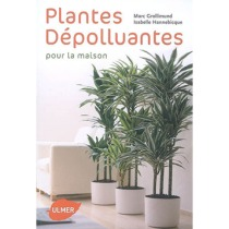 plantes-depolluantes-pour-la-maison-ulmer