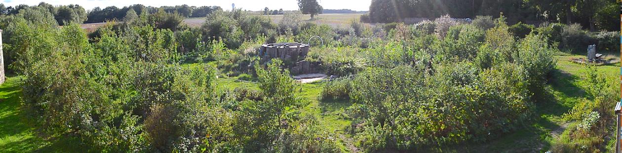 Séligonia, l'institut de permaculture de Sologne